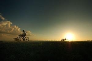 bicyclist-candaba_33973_600x450